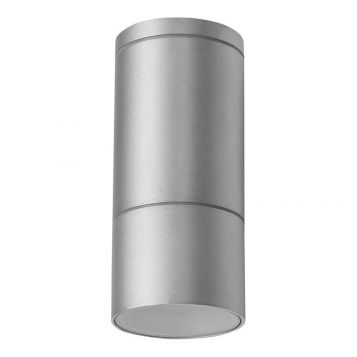 L2U-4393 Aluminium Exterior Surface Mounted Ceiling Light