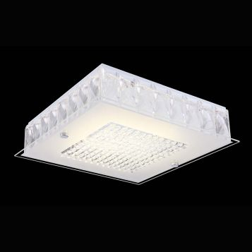 L2U-989 Modern LED Ceiling Light