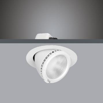 25w/38w DLS9545 Adjustable, Rotatable LED Shoplight
