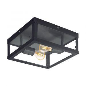 L2U-41045 Black Exterior Ceiling Light