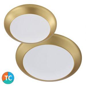 L2U-1010 Tri-Colour LED Oyster Light Range - Brushed Brass